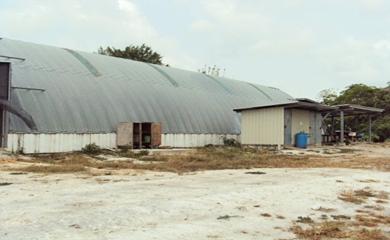 farm-fresh-ltd-1