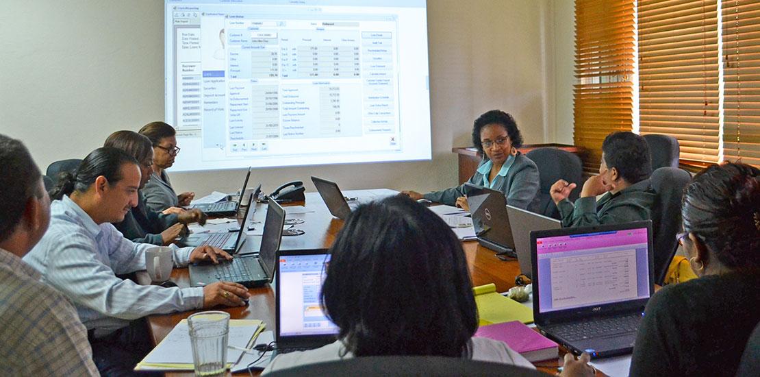 Training on Customer Software System Management