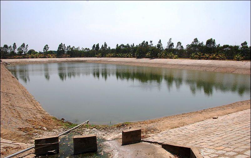 Farm, Rain Water Harvesting, Belize, Agriculture, Renewable Energy, Sustainability DFC, DFC BElize, Development Finance Corporation